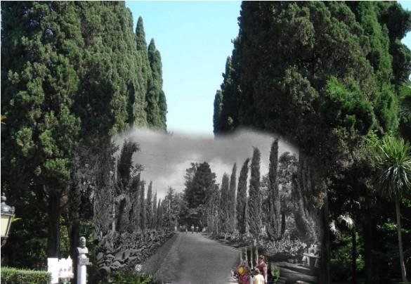 11 Ривьера. Кипарисовая аллея