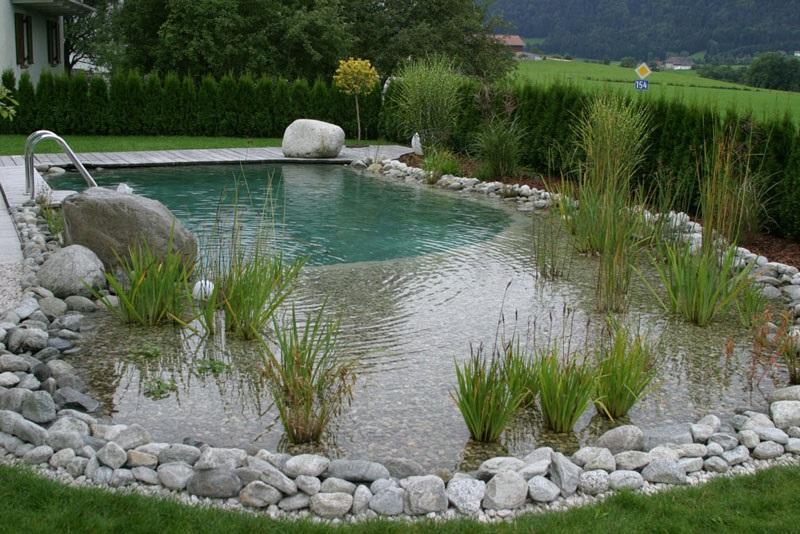 Этот натуральный плавательный бассейн и ландшафт разработан Splash Gordon Water Garden Design