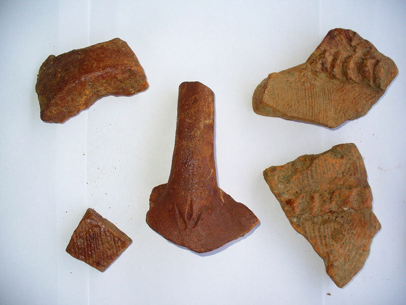 Рис. 3. Фрагменты керамики найденные на территории развалин в посёлке Абазинка